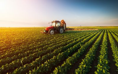 How to Support Agriculture in the Central Valley